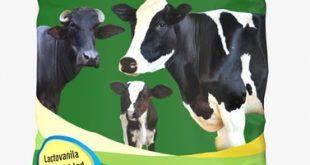 قیمت مکمل ویتامینه معدنی گاو شیری
